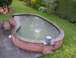 A kidney shaped Koi pond fibreglassed by GRP
